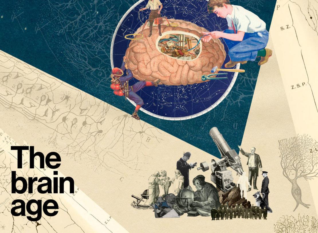 The brain age
