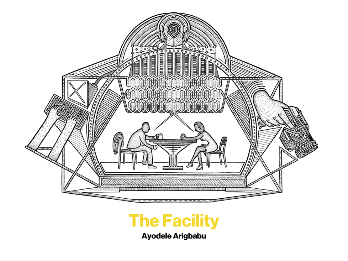 The Facility, by Ayodele Arigbabu